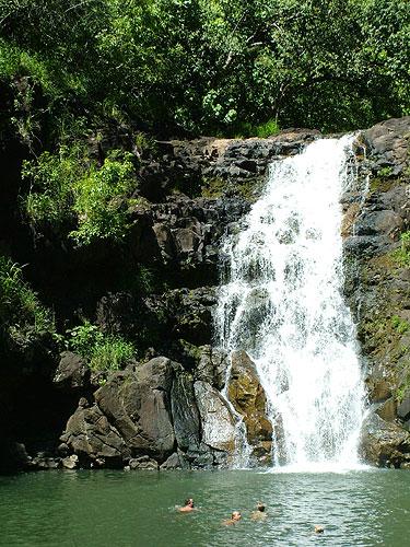 Waihi Falls North Shore Hawaii
